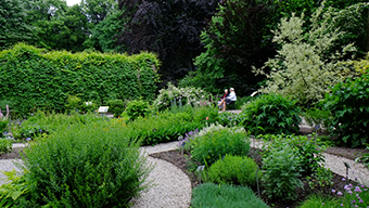 Zdjęcie biologii roślin
