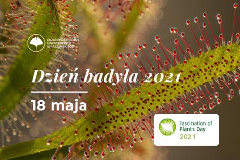 Dzień Badyla 2021 (Fascination of Plant Day)